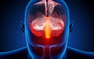 Addiction Help: Is Addiction Really a Disease?